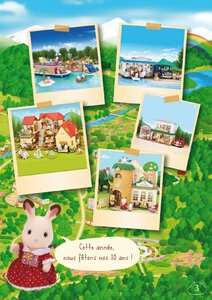 Catalogue Sylvanian Families 2015 page 3